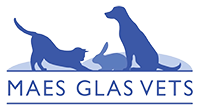 Maes Glas Veterinary Group logo image